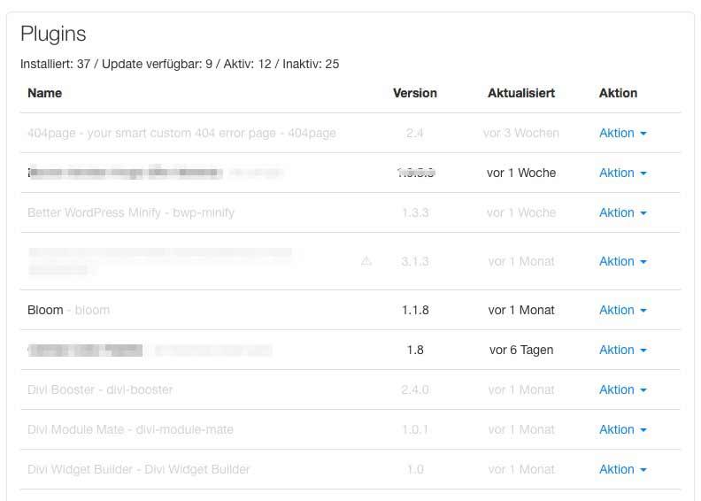 Die WordPress-Plugins bei Raidboxes